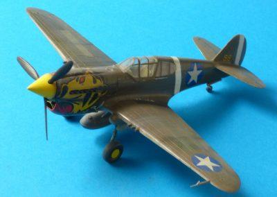 P-40 Arii
