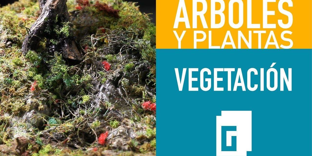 Árboles y plantas. Vegetación